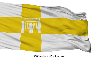Isolated Stavropol city flag, Russia - Stavropol flag, city...