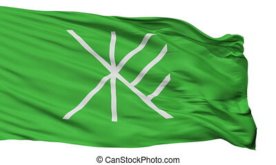 Isolated Suginami city flag, prefecture Tokyo, Japan -...