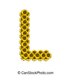 Isolated sunflower alphabet L