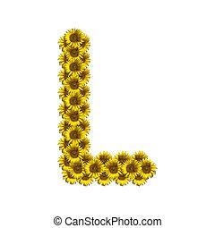 Isolated sunflower alphabet L
