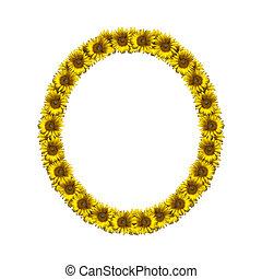 Isolated sunflower alphabet O