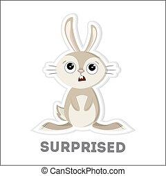 Isolated surprised rabbit.