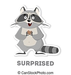 Isolated surprised raccoon. - Isolated surprised raccoon on...