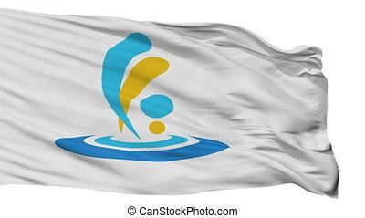 Isolated Taketa city flag, prefecture Oita, Japan - Taketa...