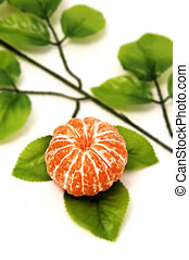 isolated tangerine with leaves on a white background