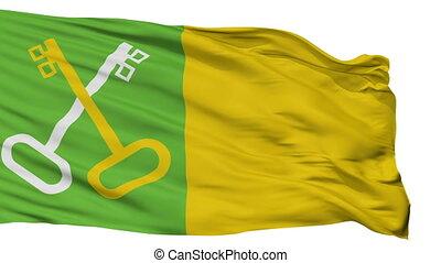 Isolated Toa Baja city flag, Puerto Rico - Toa Baja flag,...