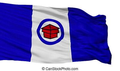 Isolated Toledo city flag, USA