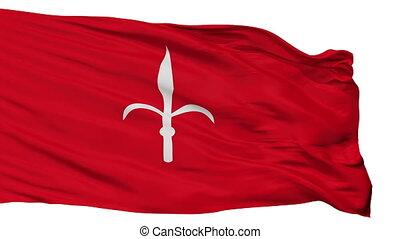 Isolated Trieste city flag, Italy - Trieste flag, city of...