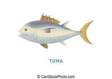 Isolated tuna fish.