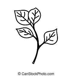 ISOLATED TWIG WITH LEAVES ON A WHITE BACKGROUND