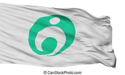 Isolated Usa city flag, prefecture Oita, Japan - Usa flag,...