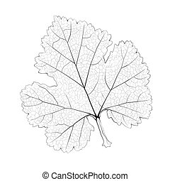 Isolated vector monochrome currant leaf.