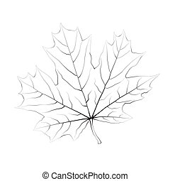 Isolated vector monochrome maple leaf.