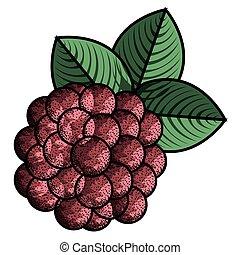 Isolated vintage raspberry