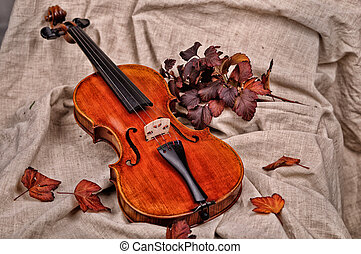 Isolated violin and autumn leaves on brown background