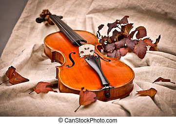 Isolated violin in fall season