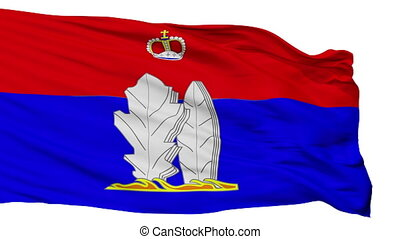 Isolated Vsevolozhsk city flag, Russia - Vsevolozhsk flag,...