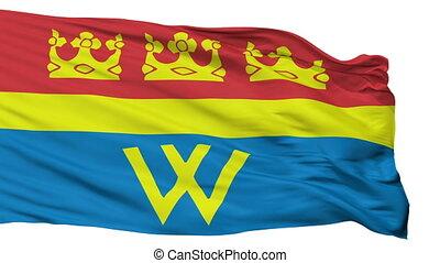 Isolated Vyborg city flag, Russia - Vyborg flag, city of...