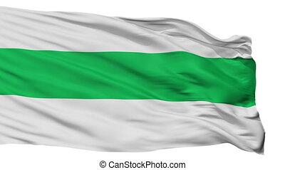 Isolated Warnes city flag, Bolivia - Warnes flag, city of...