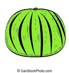 Isolated watermelon illustration