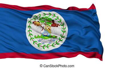 Isolated Waving National Flag of Belize