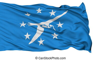 Isolated Waving National Flag of Corpus Christi City -...