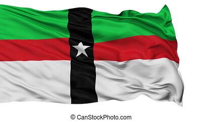 Isolated Waving National Flag of Denison City