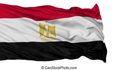 Isolated Waving National Flag of Egypt