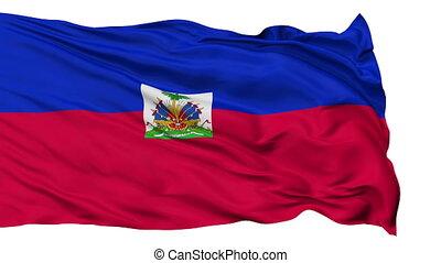 Isolated Waving National Flag of Haiti