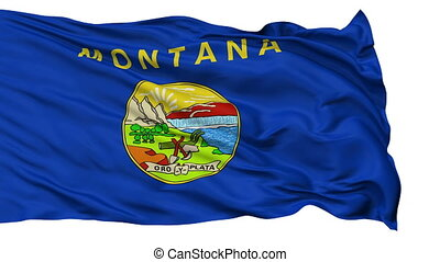 Isolated Waving National Flag of Montana