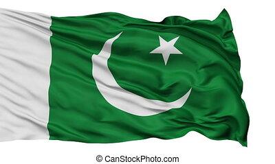 Isolated Waving National Flag of Pakistan
