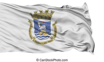 Isolated Waving National Flag of San Juan City