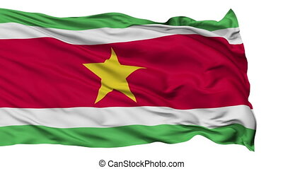 Isolated Waving National Flag of Suriname