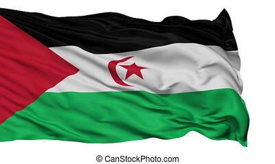 Isolated Waving National Flag of Western Sahara - Western...