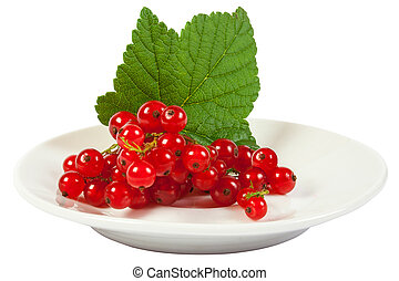 redcurrant - isolated wet redcurrant with green leaf on...