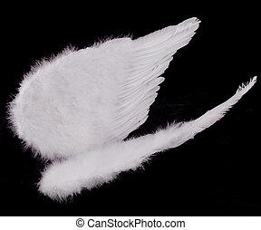 Isolated White Angel Wings on Black - Angel Wings on Black ...