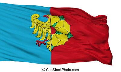 Isolated Wodzislaw slaski city flag, Poland - Wodzislaw...