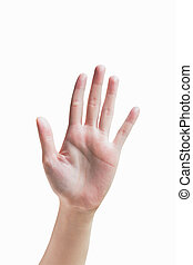isolated woman hand shows the number five with clipping path.