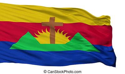 Isolated Zamora city flag, Venezuela - Zamora flag, city of...