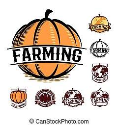 isolato, colore arancia, zucca, logotipo, set, bianco, autunno, verdura, logotype, collezione, stilizzato, globo, vettore, illustrazione