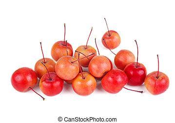 isolato, fondo, mele, granchio, bianco