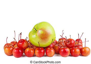 isolato, fondo, mele granchio, verde bianco