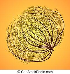 isolato, tumbleweed