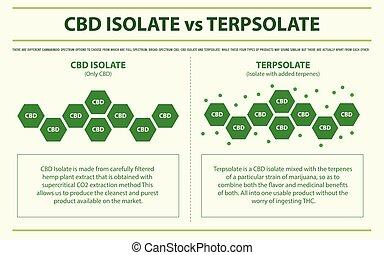 isole, infographic, terpsolate, horizontais, cbd, vs