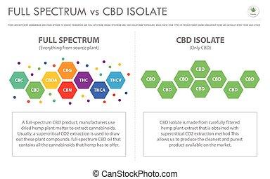 isole, negócio, infographic, horizontais, cbd, cheio, vs, espectro