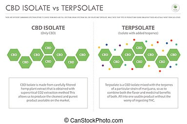 isole, negócio, infographic, terpsolate, horizontais, cbd, vs