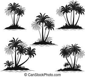 isole, silhouette, palmizi