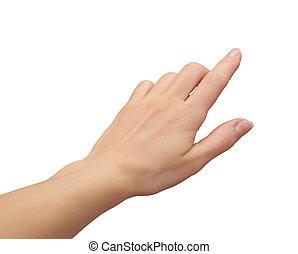 isoleted, かちりと鳴ること, スクリーン, 事実上, 手, 女性, 感動的である, 背景, 白