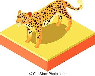 isométrique, carrée, léopard, terrestre