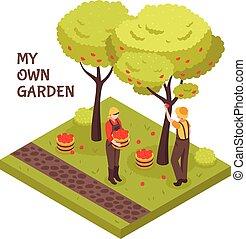isométrique, concept, jardinage
